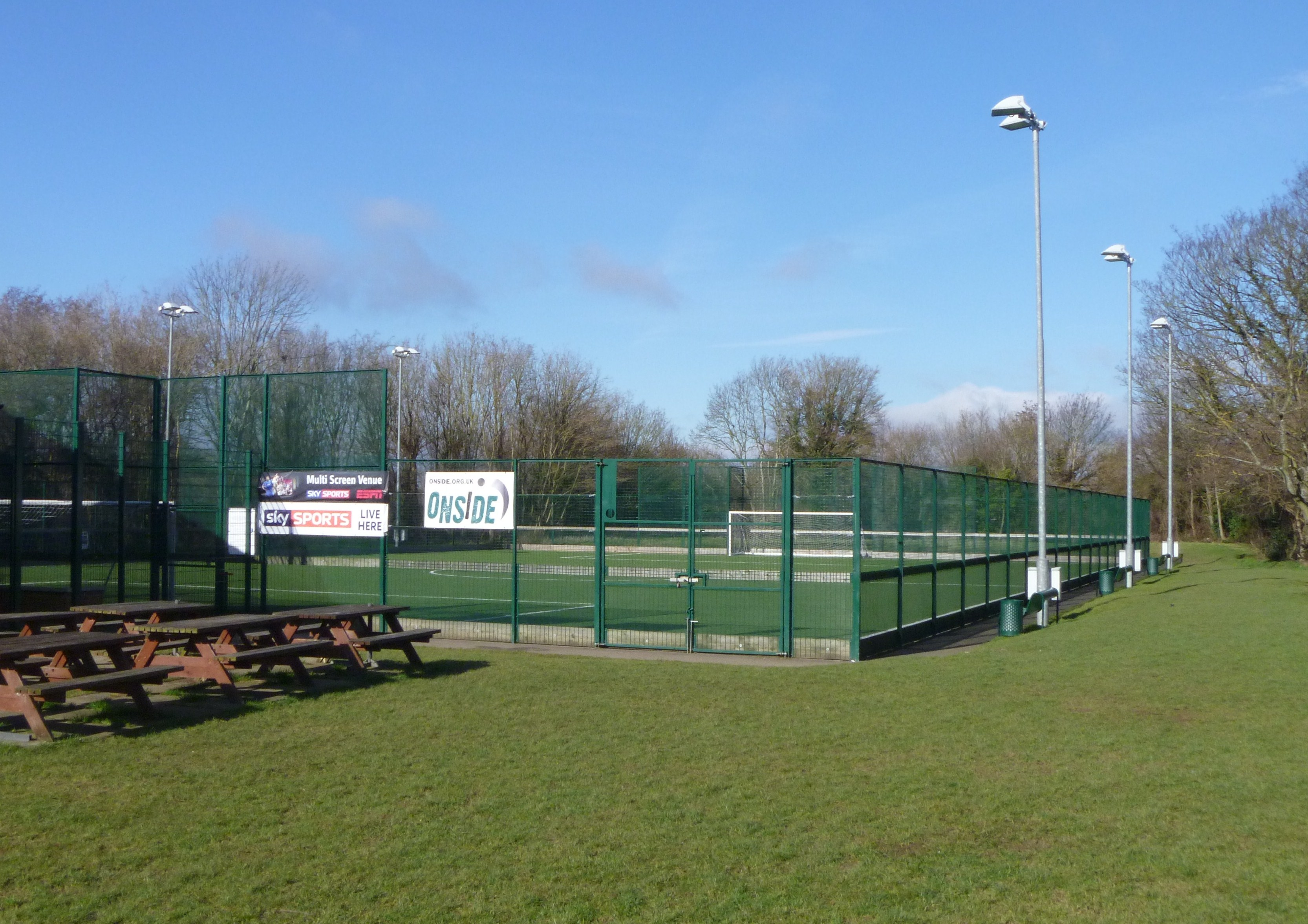 Artificial Training Pitch